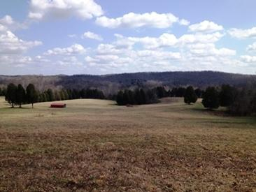 Featured Waterfront - SOLD!!!  SOLD!!!  SOLD!!! 116 Acres, Butler County, Kentucky Morgantown, Kentucky 42261