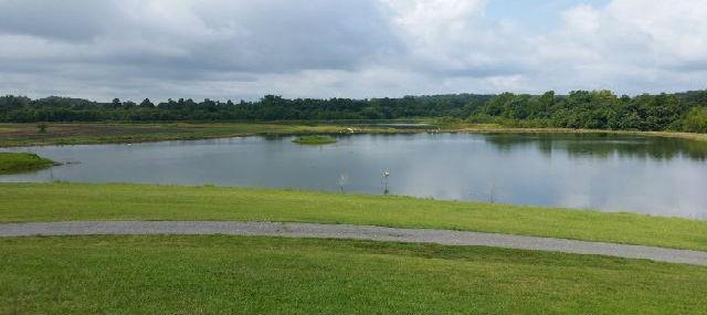Featured Waterfront - 900 Acres, 500 Tillable Acres, Smithland, Kentucky 42081