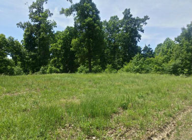 Featured Waterfront - 177 Acres, Trigg County, Trigg Furnace, Cadiz, Kentucky 42211